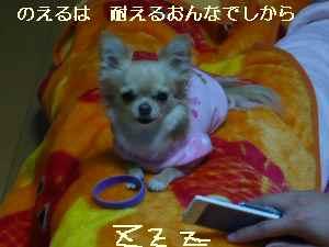 blog2008111702.jpg