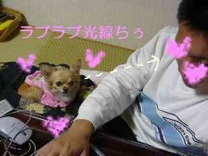 blog2008111703.jpg