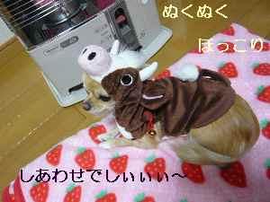 blog2008112401.jpg