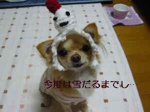 blog2008112905.jpg