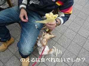 blog200811303.jpg