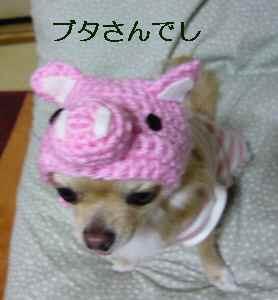 blog2008123003.jpg