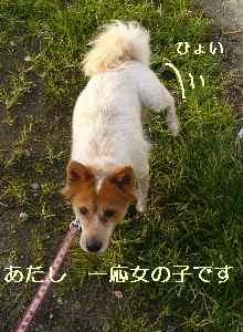 blog2008192901.jpg