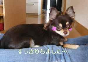 blog2008192905.jpg