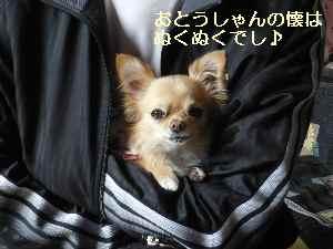 blog20090114.jpg