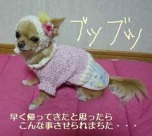 blog2009012601.jpg