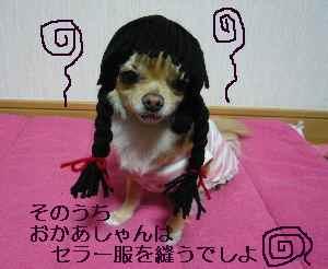 blog2009020101.jpg