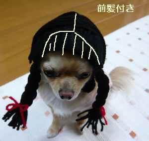 blog2009020203.jpg