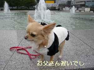 blog2009021302.jpg