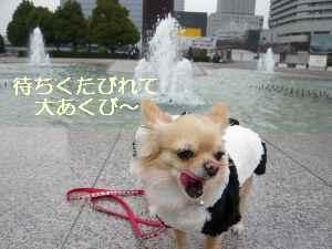 blog2009021303.jpg