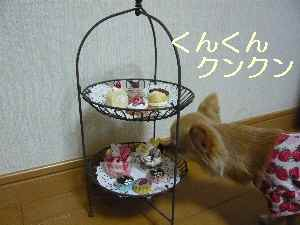 blog2009021701.jpg