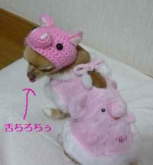 blog2009021702.jpg