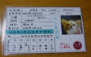 blog2009030901.jpg