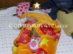 blog2009031101.jpg