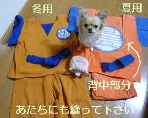 blog2009032201.jpg