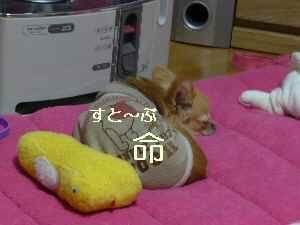 blog2009032301.jpg