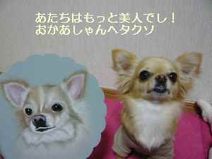 blog2009032406.jpg