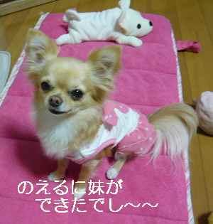 blog20090401.jpg