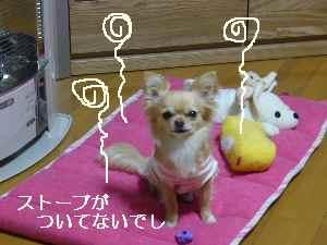 blog2009040303.jpg