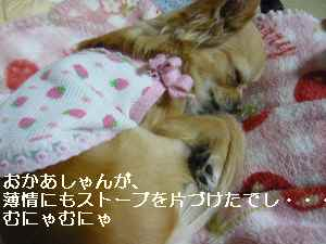 blog2009041003.jpg