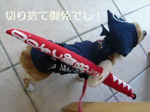 blog2009041106.jpg