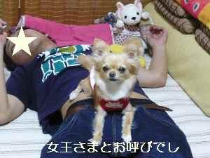 blog2009042501.jpg