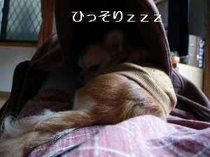 blog2009042602.jpg