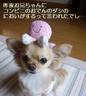 blog200904302.jpg