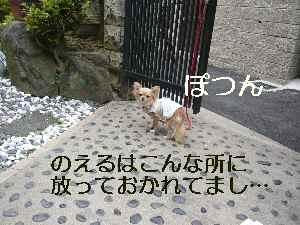 blog2009050402.jpg