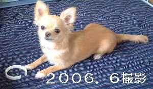 blog2009051409.jpg