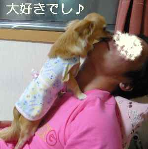 blog2009052004.jpg