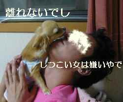 blog2009052005.jpg