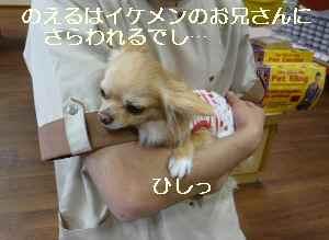 blog2009060303.jpg