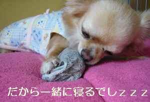 blog2009060803.jpg