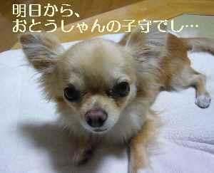 blog2009061902.jpg