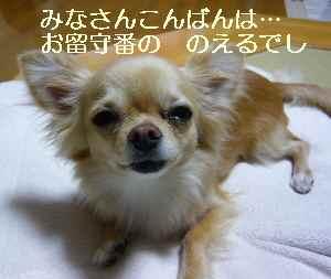blog2009061904.jpg