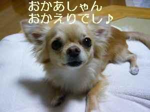 blog2009062101.jpg