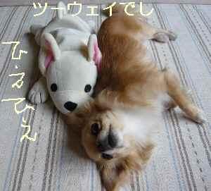 blog2009062502.jpg