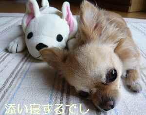 blog2009062503.jpg