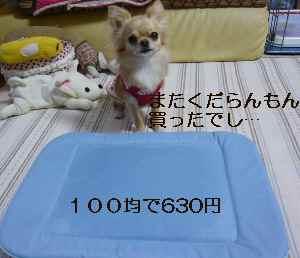 blog2009062901.jpg