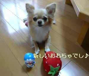blog2009070601.jpg