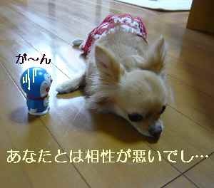 blog2009070604.jpg