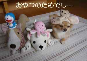blog2009070703.jpg