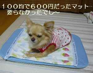 blog2009070802.jpg