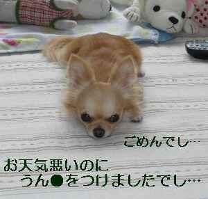 blog2009071002.jpg