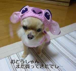 blog2009071006.jpg