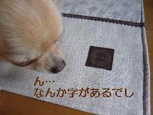 blog2009071301.jpg