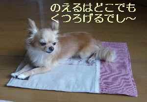 blog2009071302.jpg