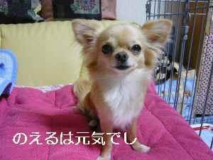 blog2009071502.jpg
