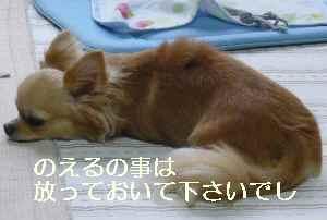 blog2009072203.jpg